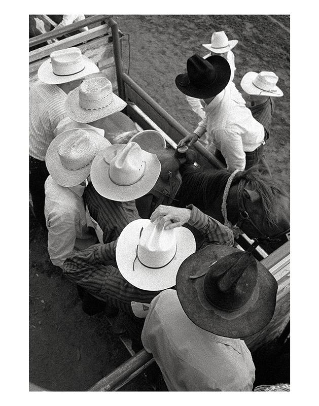9 Hats